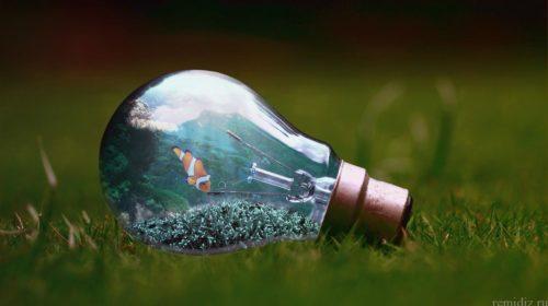 light-bulb-1129247_1280